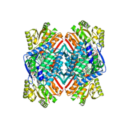 Molmil generated image of 4mpy