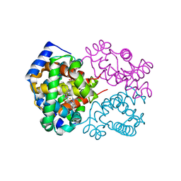 Molmil generated image of 4mqc