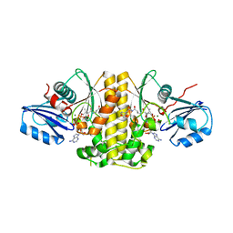Molmil generated image of 4nb4