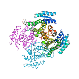Molmil generated image of 4nbv