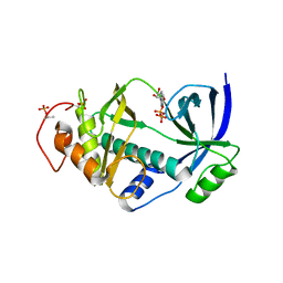 Molmil generated image of 4nl0