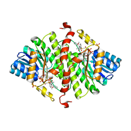 Molmil generated image of 4nmh