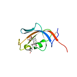 Molmil generated image of 4nnr