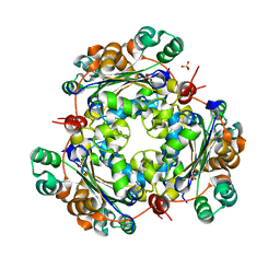 Molmil generated image of 4o0n