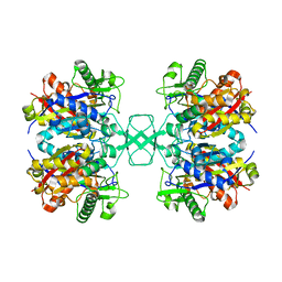 Molmil generated image of 4o9c