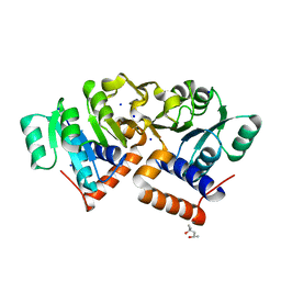 Molmil generated image of 4oki