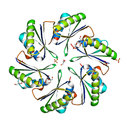 Molmil generated image of 4p2s