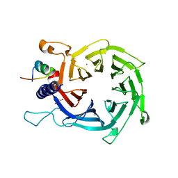 Molmil generated image of 4pc0