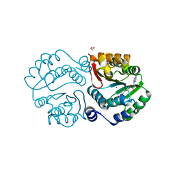 Molmil generated image of 4pcl