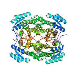 Molmil generated image of 4pn3