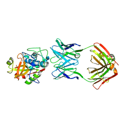 Molmil generated image of 4pp1