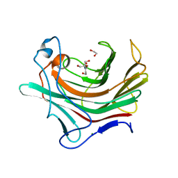 Molmil generated image of 4pq9