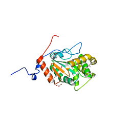 Molmil generated image of 4pwp