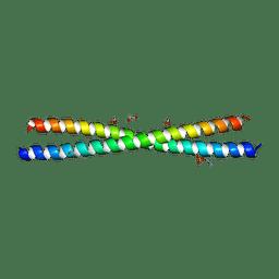 Molmil generated image of 4pxj