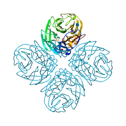 Molmil generated image of 4qn5