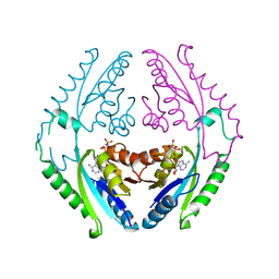 Molmil generated image of 4r2m