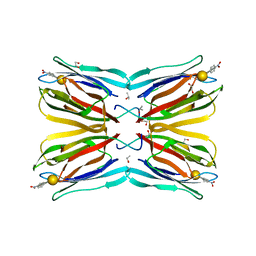 Molmil generated image of 4r6q
