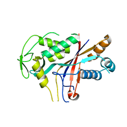 Molmil generated image of 4rdp