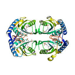 Molmil generated image of 4rhy
