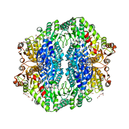 Molmil generated image of 4rjk