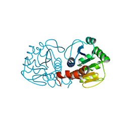 Molmil generated image of 4rky