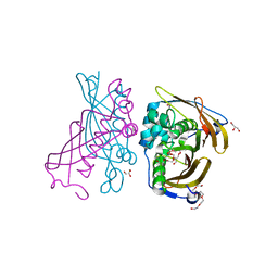 Molmil generated image of 4rlj