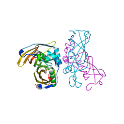 Molmil generated image of 4rlu