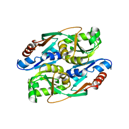 Molmil generated image of 4rns