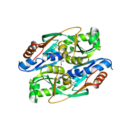 Molmil generated image of 4rpo