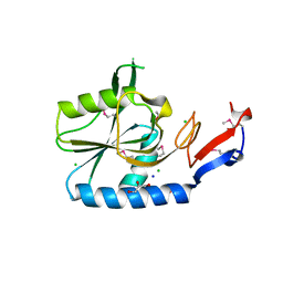 Molmil generated image of 4rqa
