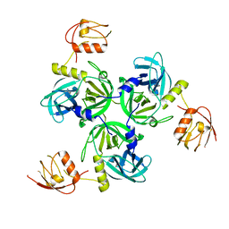 Molmil generated image of 4rr0