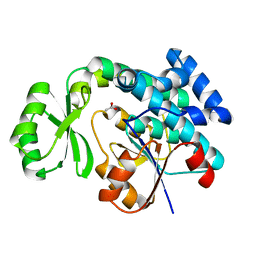 Molmil generated image of 4rr5