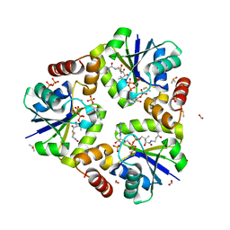 Molmil generated image of 4ruk
