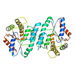 Molmil generated image of 4rzu