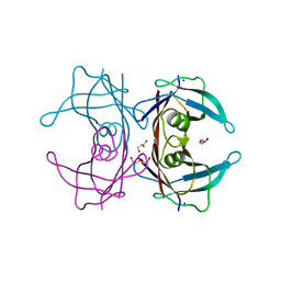 Molmil generated image of 4tlk