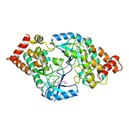 Molmil generated image of 4tpt