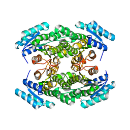 Molmil generated image of 4trr