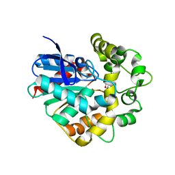 Molmil generated image of 4ufn