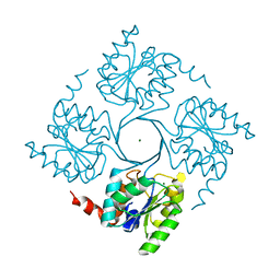Molmil generated image of 4ume