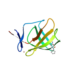 Molmil generated image of 4v2y