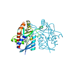 Molmil generated image of 4wkn