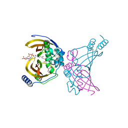 Molmil generated image of 4wnb