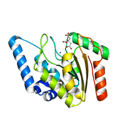 Molmil generated image of 4wpk