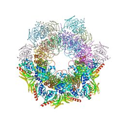 Molmil generated image of 4wxy