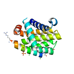 Molmil generated image of 4yk9