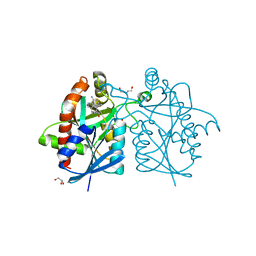 Molmil generated image of 4ynb