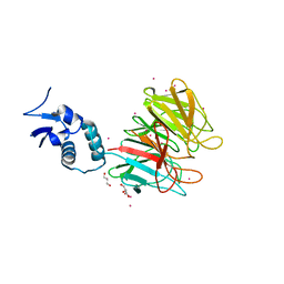 Molmil generated image of 4yy8
