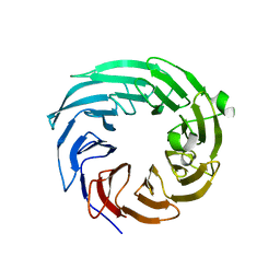 Molmil generated image of 4zov