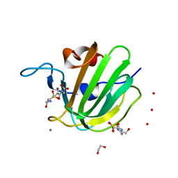 Molmil generated image of 4zyb