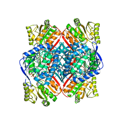 Molmil generated image of 4zz7